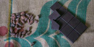 Многонациональное Государство Боливия предлагает РФ какао, кофе и другие продукты
