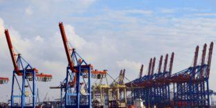 Бизнес-структуры Казахстана приобретают российский Порт Высоцк