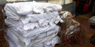 Сахалинские таможенники пресекли незаконный вывоз сельди