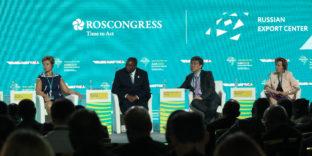 Вероника Никишина: «Интеграция на Африканском континенте усиливается»