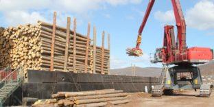 Незаконный экспорт древесины выявила Находкинская таможня