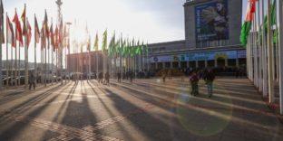 Россия представит масштабную экспозицию на выставке «Зеленая неделя» в Берлине
