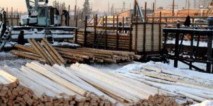 По итогам 2020 года Иркутской таможней на канале экспорта леса выявлено 28 преступлений и более тысячи правонарушений
