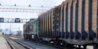 Контрабанда пиломатериалов на 39 млн рублей выявлена Читинской таможней