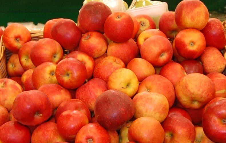 В Башкирии таможенники выявили свыше 12 тонн овощей и фруктов неизвестного происхождения