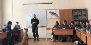 Кинологи Шереметьевской таможни поделились опытом дрессировки служебных собак со студентами