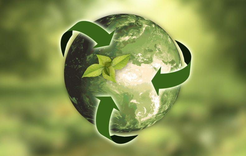 Подробный аналитический материал на тему: экологический сбор: способы и порядок уплаты. Расчёт суммы экологического сбора.