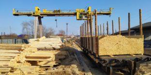Уральские таможенники пресекли канал нелегального экспорта лесоматериалов