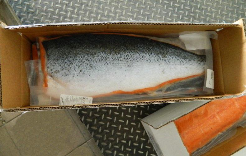 Более 100 кг рыбы «спрятались» среди креветок