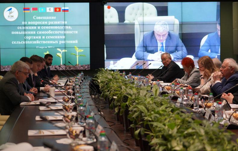 Унификация национального законодательства поможет кооперации стран ЕАЭС в селекции и семеноводстве