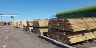 Контрабанду лесоматериалов в Китай почти на 83 млн рублей выявили сотрудники Читинской таможни