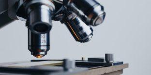 Ввоз товаров для научных целей: таможенники консультируют ученых [вебинар]