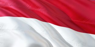 Международная деловая миссия в сфере информационных технологий Smart City в Индонезию