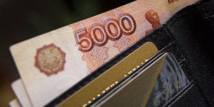 Сотрудники Шереметьевской таможни пресекли незаконное перемещение наличных денежных средств в особо крупном размере