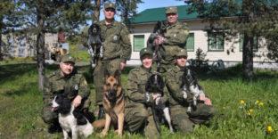 Северо-Западное таможенное управление: более 160 килограммов наркотических средств изъято с применением служебных собак