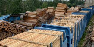 Сибирская оперативная таможня пресекла контрабанду древесины на 150 млн рублей