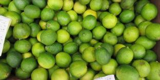 В Башкирии таможенники в рамках рейдов по безопасности пищевой продукции обнаружили партию лаймов из Бразилии