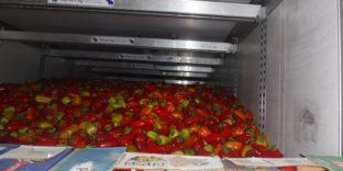 Уральские таможенники выявили попытку нелегального ввоза 17 тонн перцев из Казахстана
