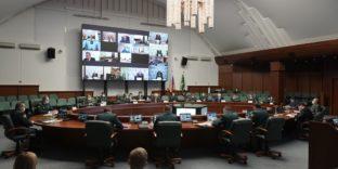 В ФТС России обсудили вопросы контроля экспорта леса и лесоматериалов
