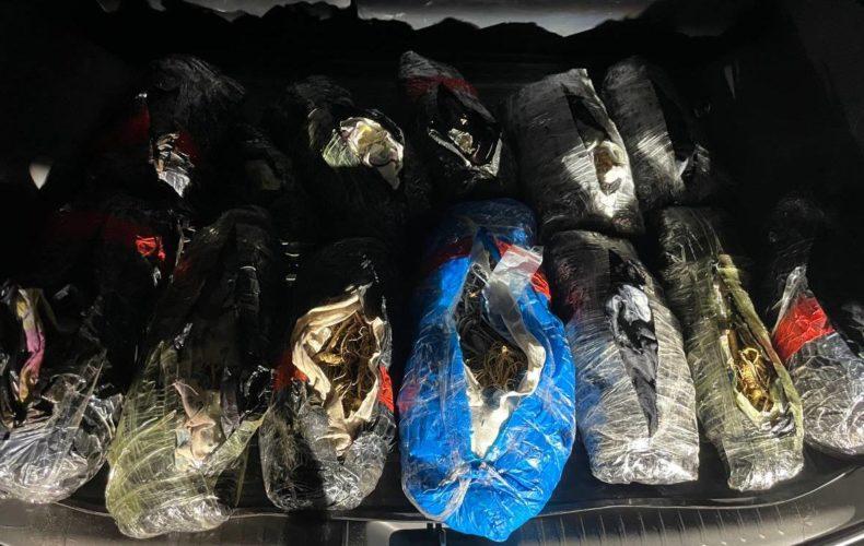 Контрабандный вывоз трепанга и женьшеня стоимостью 85 млн рублей пресекли таможенники совместно с территориальными органами безопасности