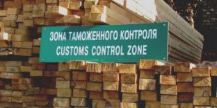 Контроль влажности экспортируемых лесоматериалов обсудят на видеосовещании в СТУ